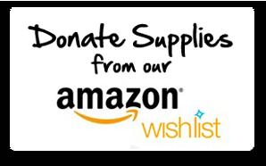 Amazon-Wish-List1
